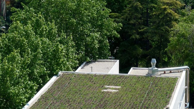 cubiertas-ajardinadas1-1171x450