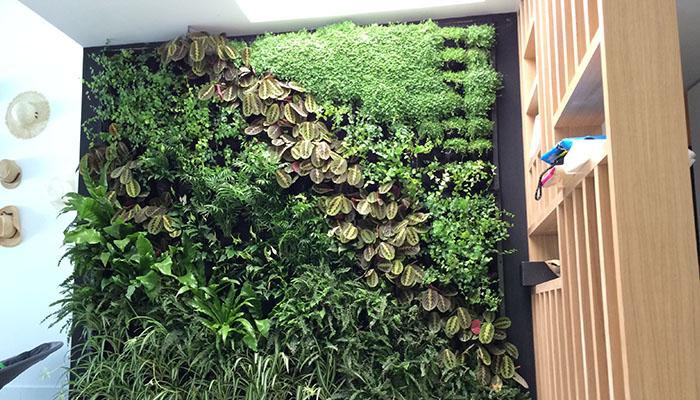 jardin-de-interior-vivienda