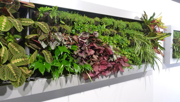 jardin-vertical-gastrolab