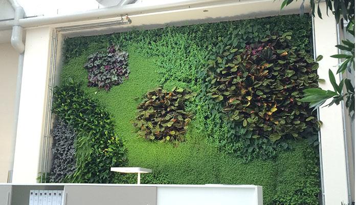 jardin-vertical-oficina