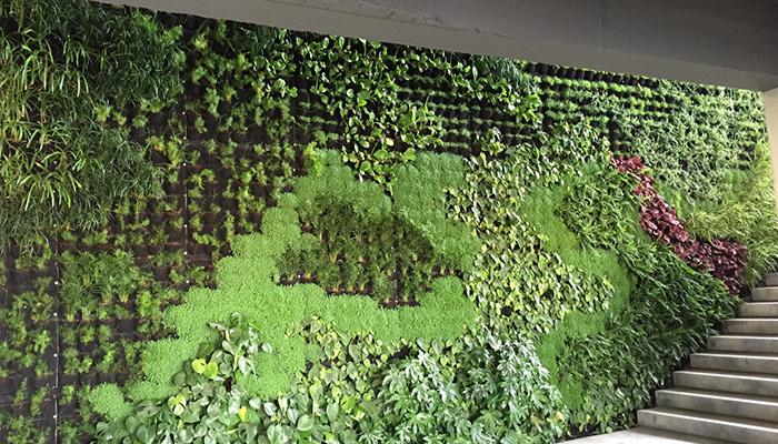 jardin-vertical-oficinas-empresa