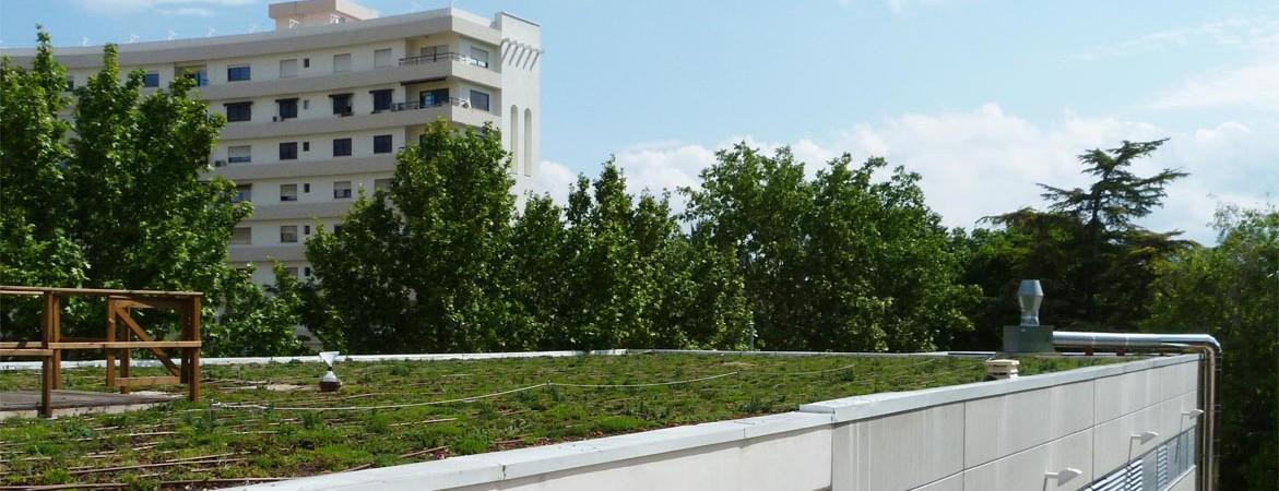 cubierta-ajardinada-en-edificio-publico2-1171x450